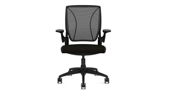 Humanscale Diffrient World Office Desk Chair W11